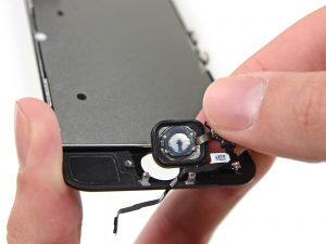 iPhone 5S kijelző csere home gomb kivétele